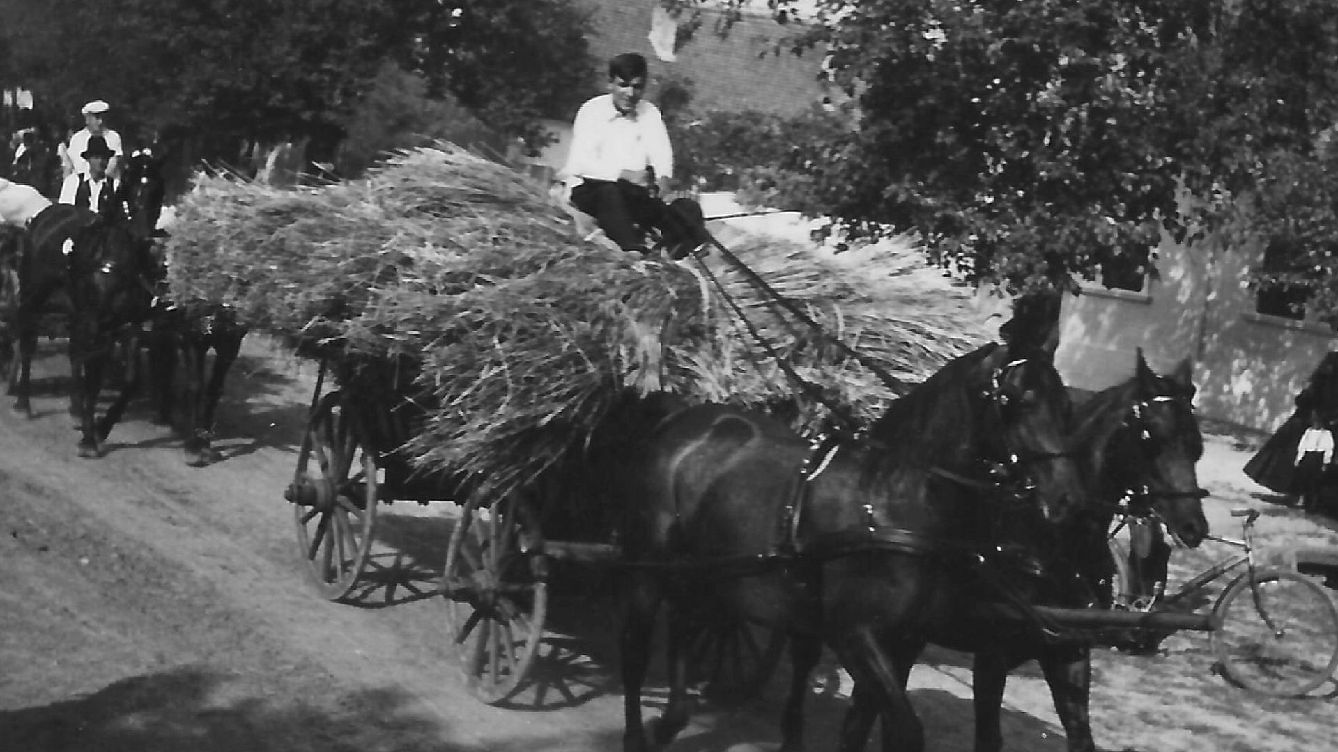 Garbenwagen des Landwirts Franz Pertschy