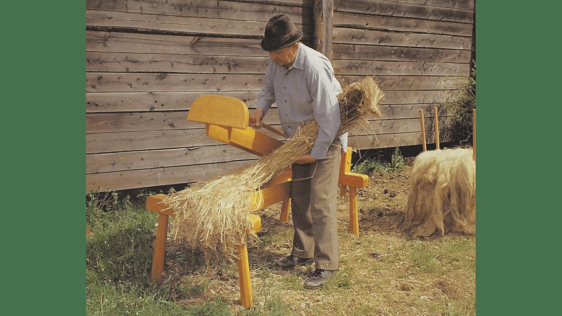 Das Hanfbrechen mit der Hanfbreche- 1992 nachgestellt. War eineschwere Knochenarbeit. Durch den Hanfanbau kam ein gewisser Wohlstand in die Dörfer – deshalb nannte man den Hanf auch das weiße Gold der Batschka. Foto: Archiv Freundeskreis Filipowa.